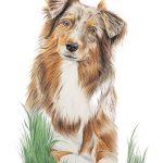 ein Porträt des Tieres auf dem Bild